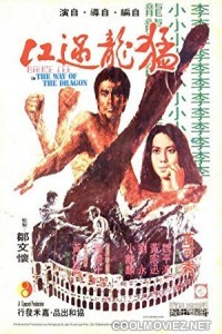 The Way Of The Dragon (1972) Hindi Dubbed Movie